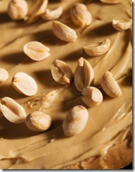Peanut Butter Sandwich Closeup